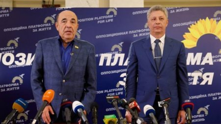 «Об'єднана опозиція зможе перемогти на виборах в Раду», – заявив Рабінович