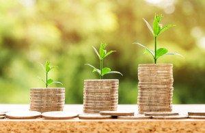 За 9 місяців в економіку Закарпаття іноземними інвесторами вкладено понад 24 млн доларів