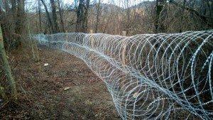На Закарпатті вздовж кордону встановили колючий дріт (ФОТО)