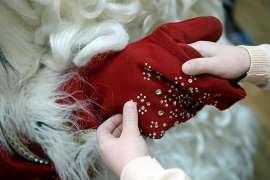 Під час свята у дитсадку помер чоловік у костюмі Діда Мороза