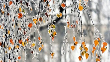 Всю Україну накриє негода: Прогноз погоди на 2 грудня