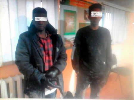 Двох сомалійців затримали на кордоні з Угорщиною (фото)