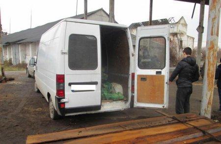 Поліцейські у Мукачеві викрили місцевих чоловіків на крадіжці деревини (фото)