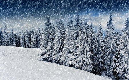 В суботу Закарпаття засипле снігом