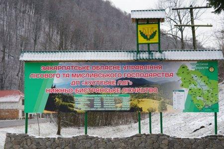 На Хустщині лісівники облаштували відпочинкову зону  (ФОТО)