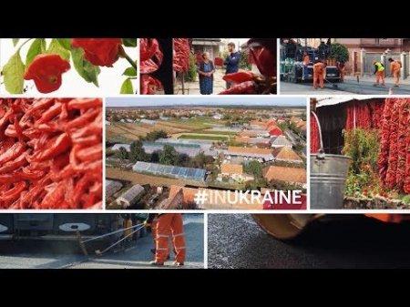В Україні є село з перецем, і воно знаходиться на Закарпатті (відео)