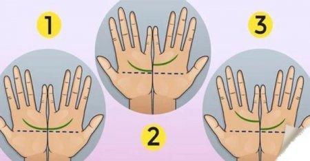 Ваші Руки Кажуть: те, як розташована Лінія Серця, визначає Все У Вашому Житі