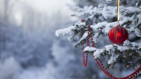 Стало відомо,яка буде погода у Закарпатті на Новорічну ніч та Різдво