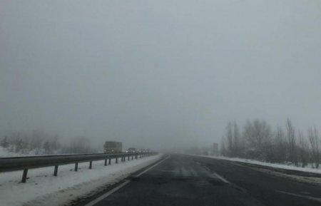 Мокрий сніг та туман: погода на Закарпатті буде вологою