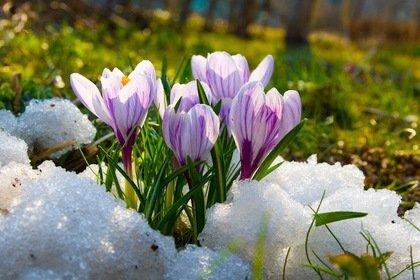 Погодні умови на території Закарпатської області, 31 березня