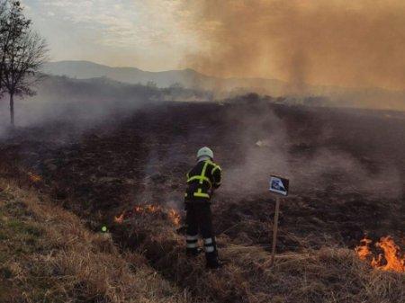 За добу в краї виникло 33 пожежі у екосистемах
