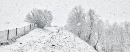 На дворі 30 березня, але зима не відступає: на Рахівщині сьогодні випав сніг (фотофакт)