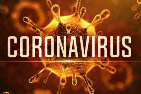 Інфекціоніст назвав дату піку коронавірусу в Україні