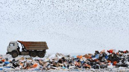 На Закарпатті незабаром облаштують сміттєвий полігон