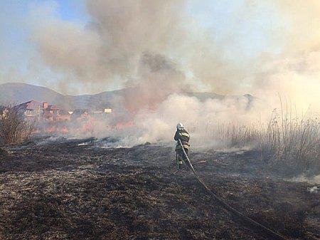 Половина з усіх пожеж, що виникли на Закарпатті – це пожежі сухотрав'я