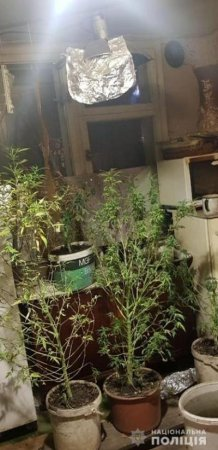 У Рахові викрили облаштовану нарколабораторію (Фото)