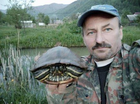 """В Усть-Чорній на території садиби """"Спокуса Карпат"""" живе болотяна черепаха (фото)"""