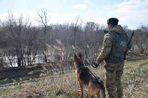 Закарпатець намагався незаконно перетнути кордон, аби повернутися на місце роботи в Угорщині
