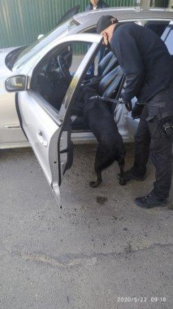 Зброя та наркотики: на закарпатському пункті пропуску виявили заборонені речі (фото)
