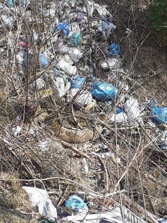 На Рахівщині гірські потоки закидані сміттям (Фото)