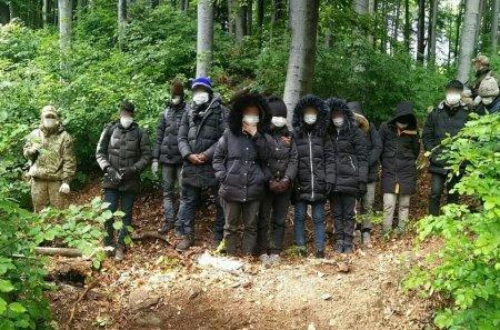 Групу незаконних мігрантів затримали прикордонники Закарпаття у лісі (Фото)