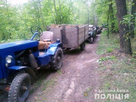 На Борзнянщині поліція затримала три трактори з незаконним лісом