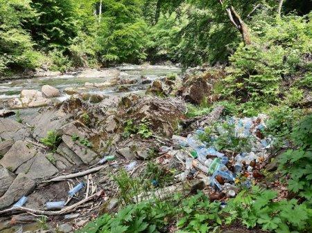 Гірська річка Закарпаття отруєна побутовими відходами?