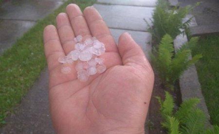 Аномальна погода продовжує дивувати: на Хустщині випав град (фото)