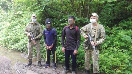 На Закарпатті прикордонники затримали нелегалів з Шрі-Ланки