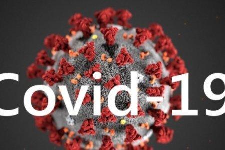 Ситуація щодо COVID-19 на Тячівщині станом на 7 липня: +7 нових випадків