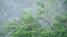 Штормове попередження! На Закарпаття сунуть грози та сильні дощі
