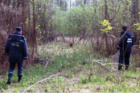 На Перечинщині в лісі заблукала дівчинка