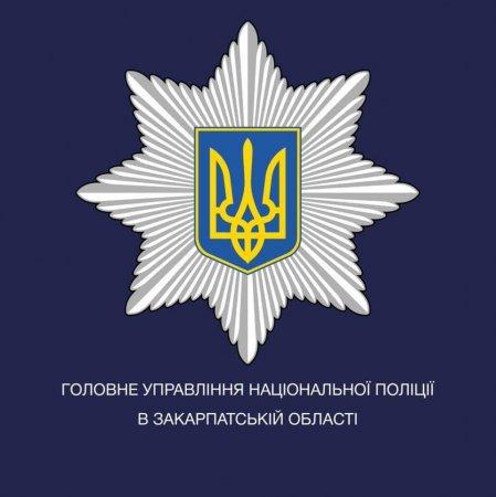 Поліція розпочала слідство за фактом умисного пошкодження майна у Мукачеві