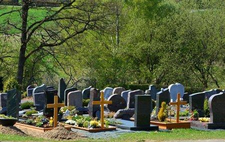 На Тячівщині сельчани викидають мертвих тварин та протухлі ковбаси на кладовище (ФОТО)