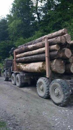 На Рахівщині людям вдалося зупинити КамАЗ з цінною деревиною (ФОТО)