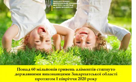 Понад 60 мільйонів гривень аліментів стягнуто державними виконавцями Закарпатської області протягом І півріччя 2020 року