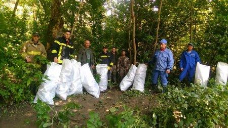Розпочаті роботи з ліквідації сміттєвих заторів на річці Латориця
