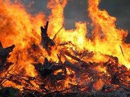 Закарпаття потерпає від спеки: в області оголосили надзвичайний рівень пожежної небезпеки