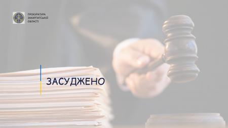 4 роки ув'язнення за скоєння смертельної ДТП: прокуратура довела вину мешканця Рахівщини