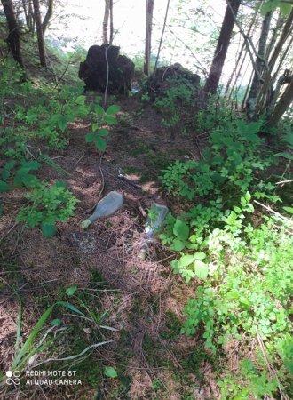 Ліси Рахівщини потопають у смітті (ФОТО)