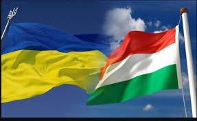 Угорщина подарувала закарпатським лікарням 50 апаратів ШВЛ (відео)