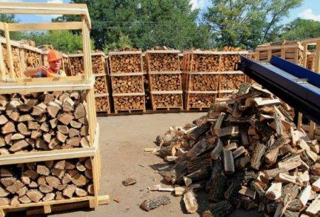 На Закарпатті можна купити дрова  на території природо-заповідного фонду