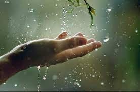 Синоптики прогнозують на Закарпатті тиждень дощів